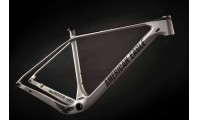 American Eagle Atlanta 2.0 Frameset Metal Grey
